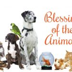 Blessing of the Animals – Saturday, October 6 – 10:00 a.m.